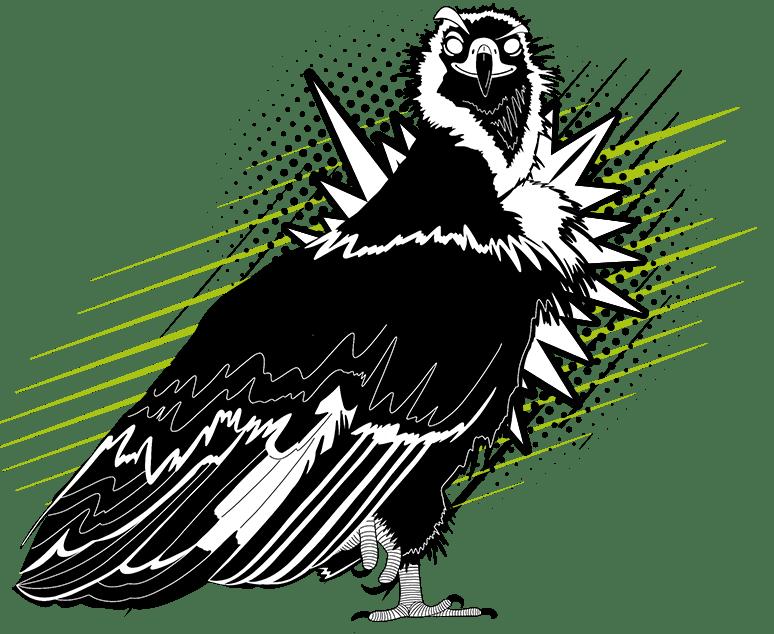 imágen pájaro